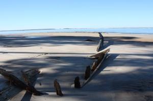 11,25,2012 Cumberland Beach Wreck 2